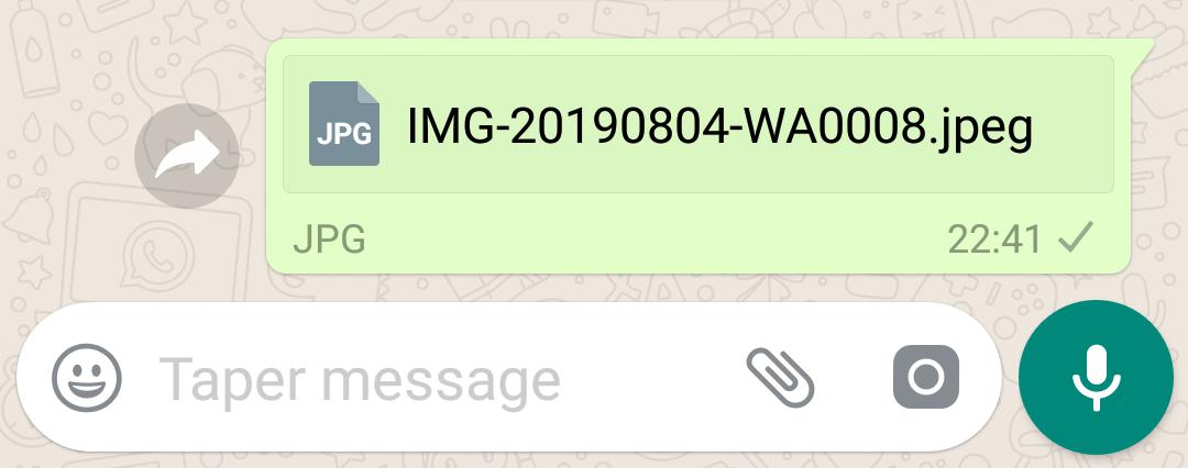 send whatsapp file