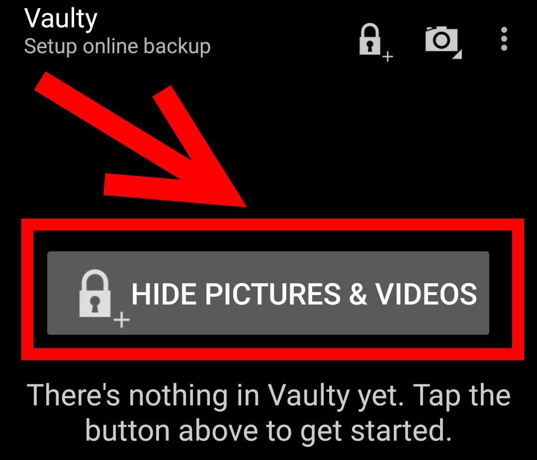 hide vaultry pictures